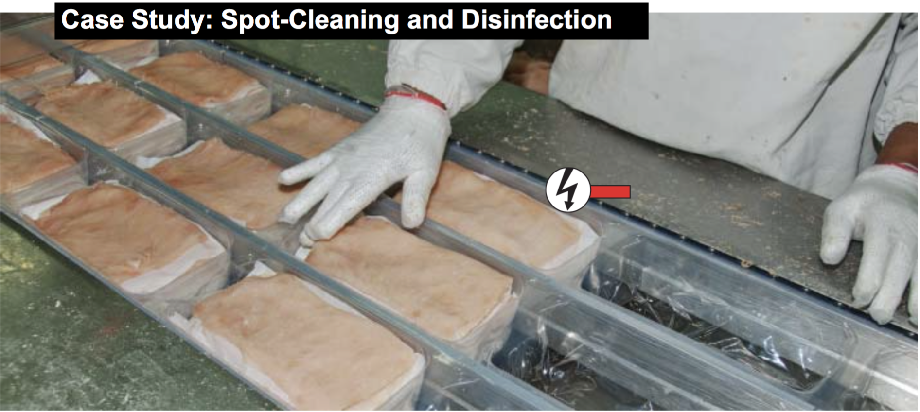 Case Study: Spot Cleaning and Disinfection in Food Processing Industry