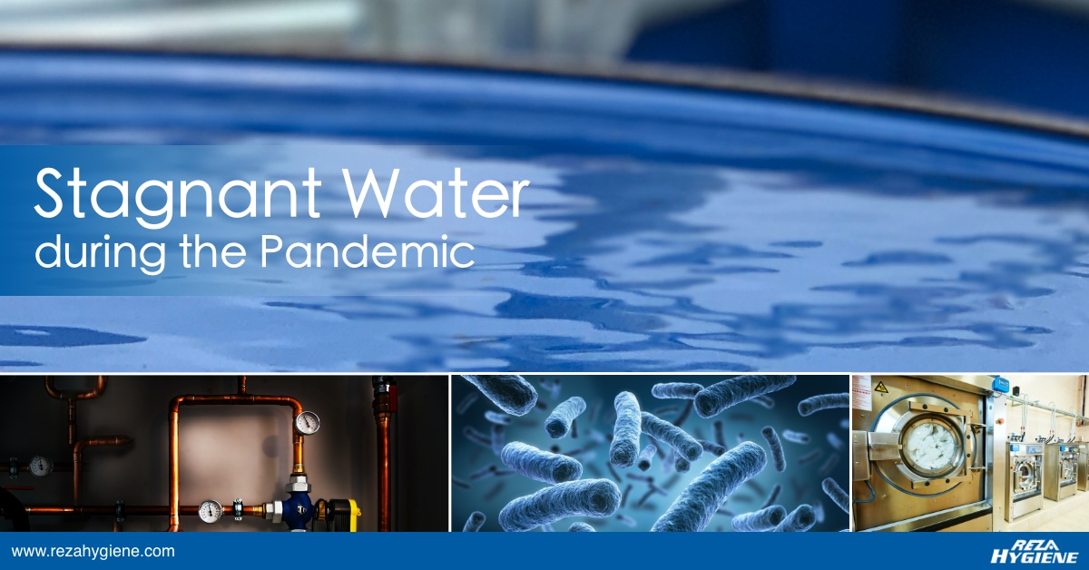 Stagnant Water during the Pandemic